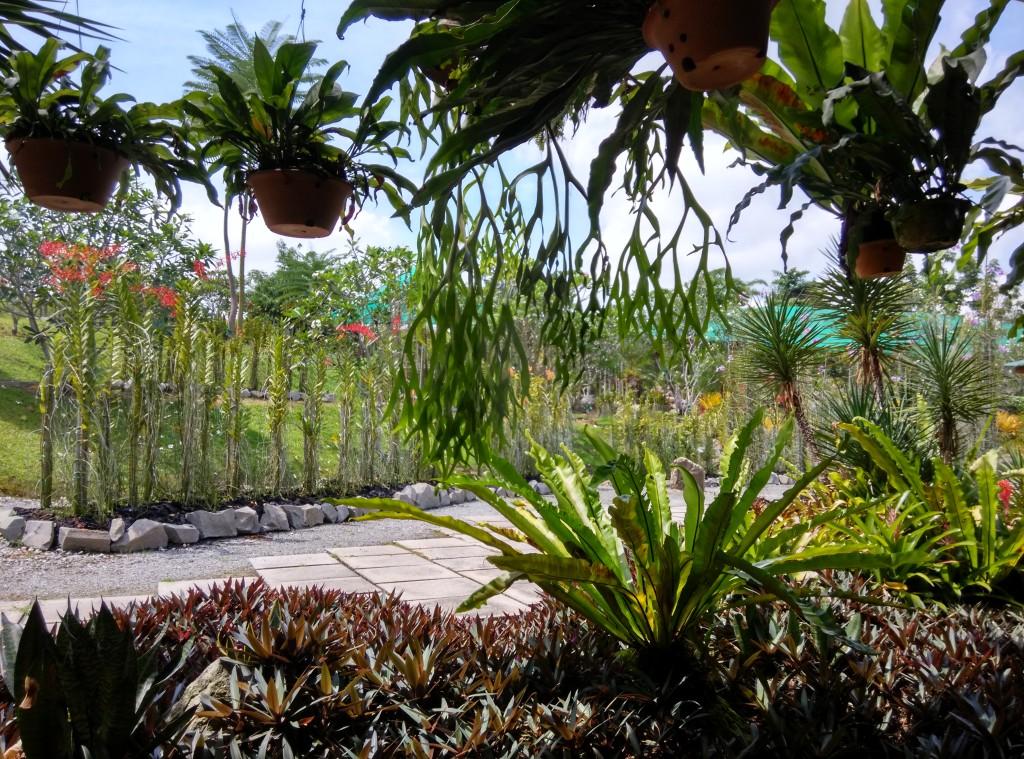 Taman Orkid, Kuching